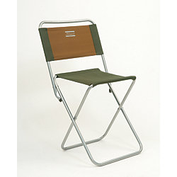 Shakespeare® Folding Backrest Stool