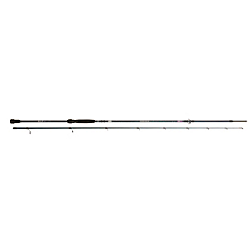 Iaconelli Spinning Rod