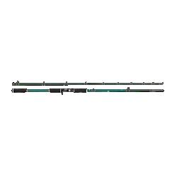 Beast X Casting Rod