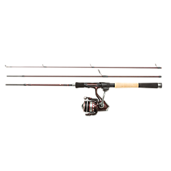 Tormentor Spinning Combo